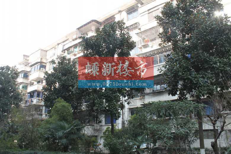 10122出租东圃自建房3楼,总高4层半