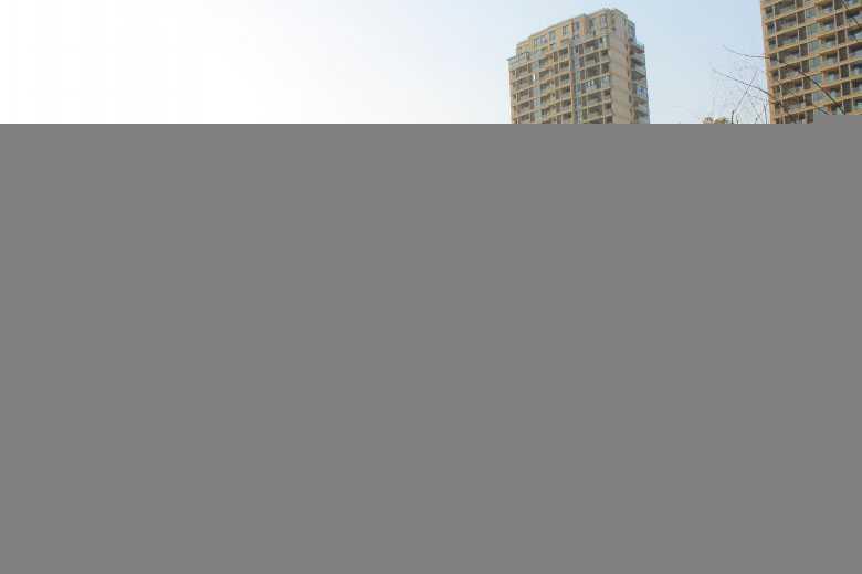 0918白鹭香溪的实拍照片