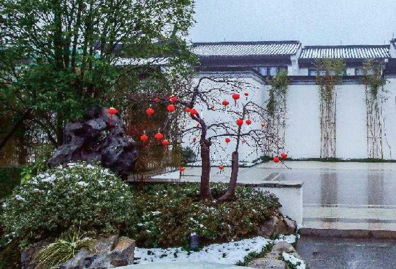 绿城中国|桂语山南 寒冬的院子  也别有一番美好诗意