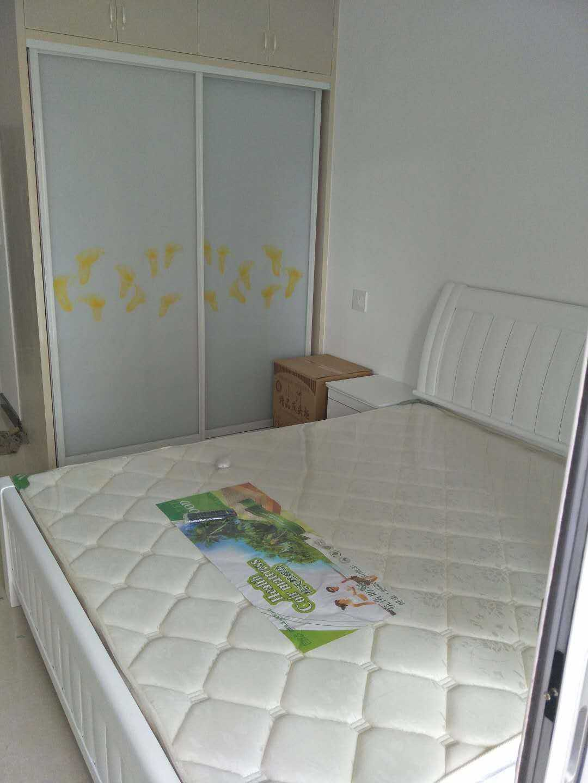04303:出租富民大厦单身公寓全新装修,面积41平方,一室一厅一厨一卫,朝南,租价1650元/月,半年起付长租可优惠的实拍照片