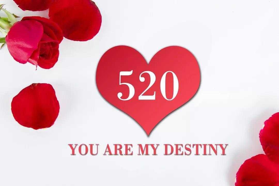 """520告白日,这些就是你要的""""花""""式告白"""