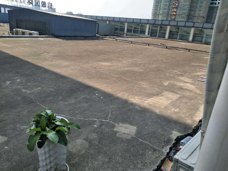 07031:出租信源国际5楼复式楼,面积60十60平方,全新精装修,家电家具齐,边套有大平台,适合商住两用,2400一个月,带一大平台的实拍照片