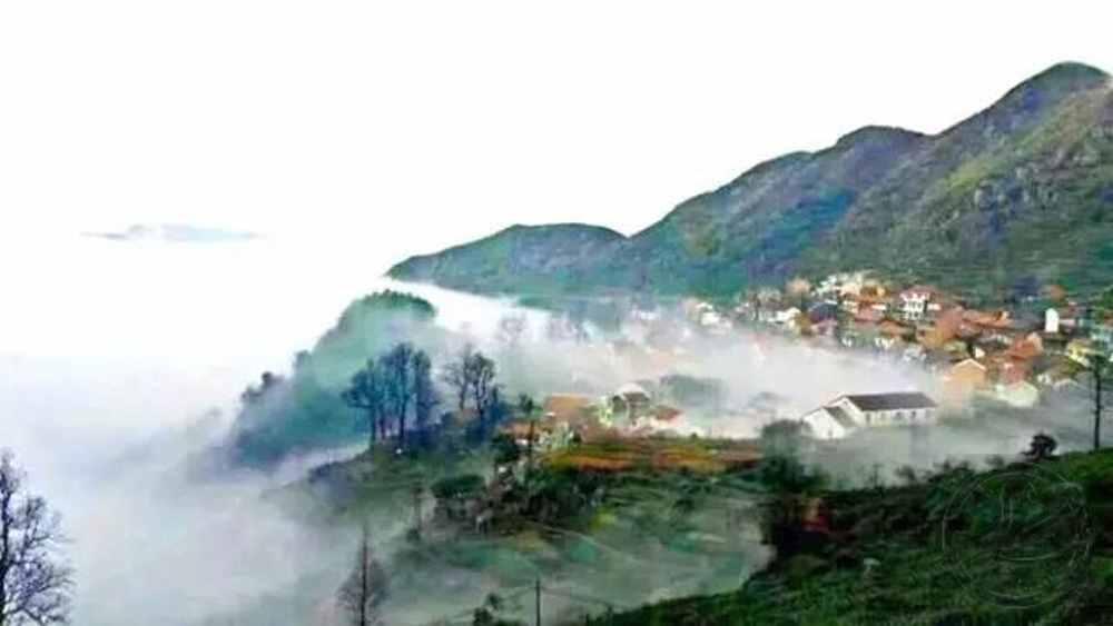 上坞山村:打造嵊州市首个农耕文化亲子体验村
