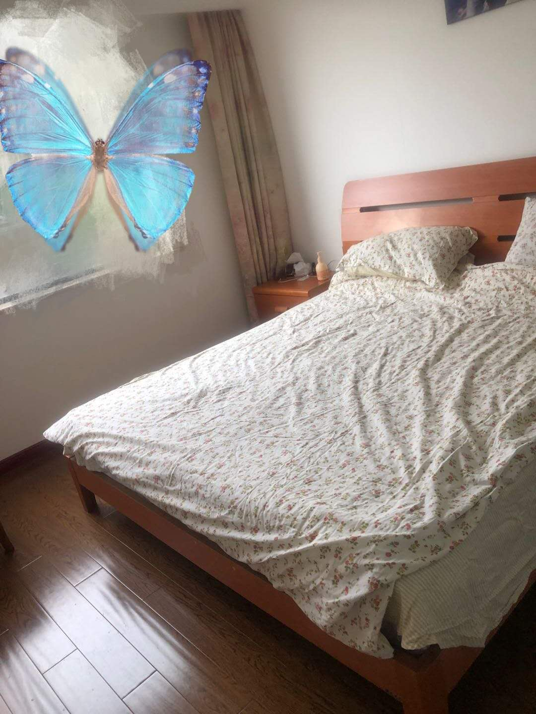 A10142出售城东玉兰花园3楼,89平,3室2厅1卫,精装修,阳光非常好,售价94.8万的实拍照片