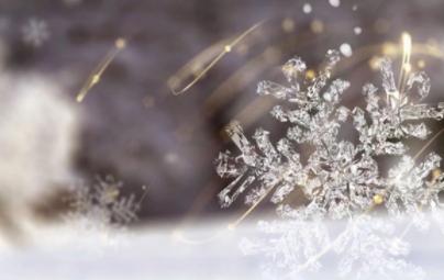 嵊星湾|冬藏万物  世界开始酝酿向上的生命力