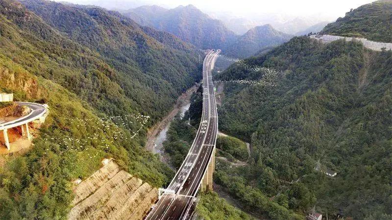 全长115.4公里,总投资约290.4亿元!又一横跨嵊州的高速通车啦!