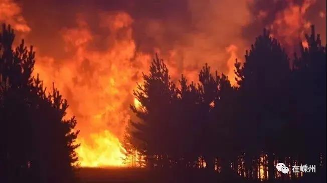 昨夜嵊州多地发生山林火灾, 目前山火已扑灭
