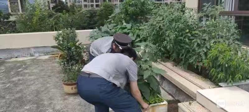 嵊州这个楼盘店铺上方平台成菜园,楼下店铺漏水,谁来负责?
